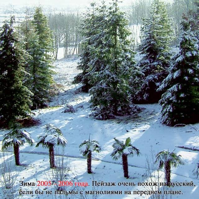 Книга «Источник жизни. Том 1» (Николай Левашов)