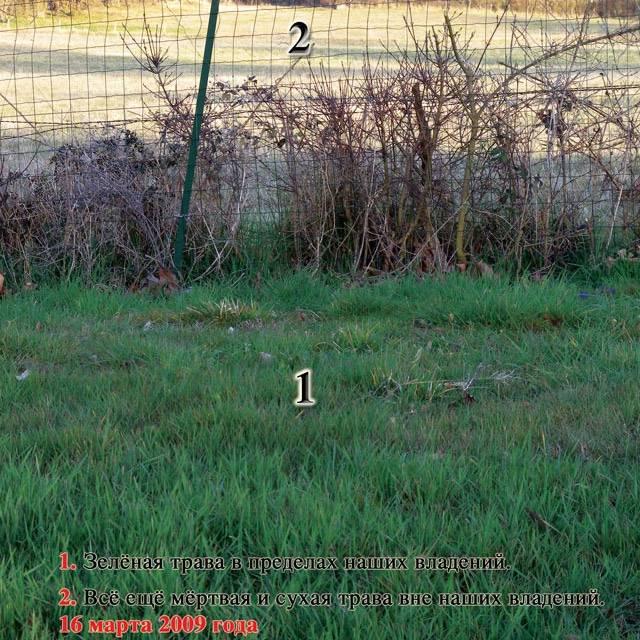 Книга «Источник жизни. Том 3» (Николай Левашов)